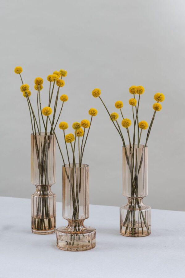 Allium vase set of 3- Amber - Signature Editions